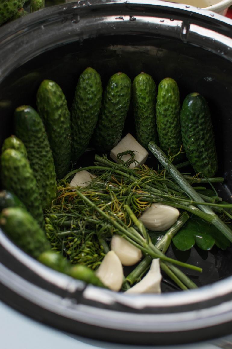 Naczynie do kiszenia ogórków